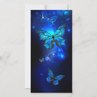 Morpho Butterfly in the Dark Background