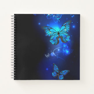 Morpho Butterfly in the Dark Background Notebook