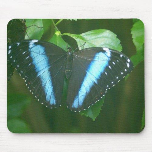 Morpho Butterfly mousepad