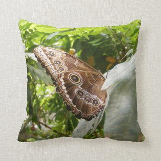 Morpho Butterfly Throw Pillow