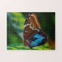 Morpho Peleides Butterfly. Jigsaw Puzzle