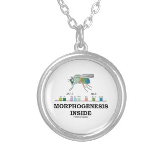 Morphogenesis Inside Drosophila Fruit Fly Genes Round Pendant Necklace