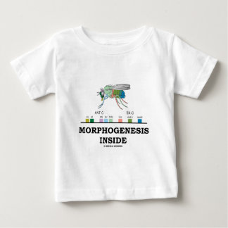 Morphogenesis Inside (Fruit Fly Drosophila Genes) Baby T-Shirt