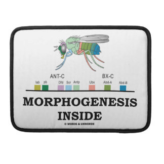 Morphogenesis Inside (Fruit Fly Drosophila Genes) MacBook Pro Sleeve