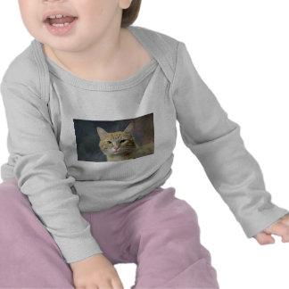Morris Camisetas
