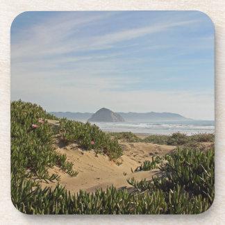 Morro Bay Coasters