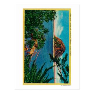 Morro Rock in San Luis Obispo County Postcard