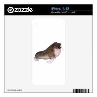 Morsa con mirada rara iPhone 4 skin