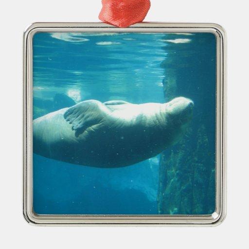 Morsa de la natación adorno navideño cuadrado de metal