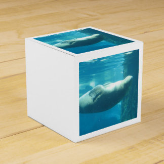 Morsa de la natación caja para regalo de boda