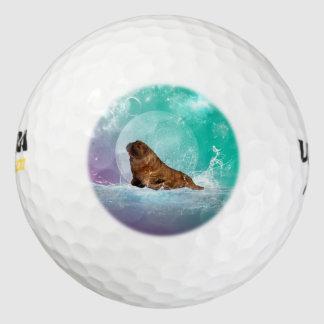 Morsa linda con el chapoteo del agua pack de pelotas de golf
