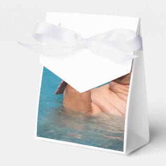 Morsa que aplaude cajas para regalos de boda