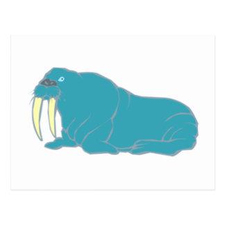 Morsa walrus tarjeta postal