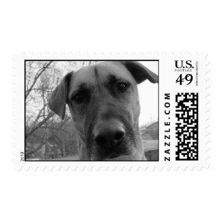 Mort the Dog Postage