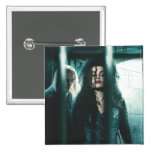 Mortal santifica - Bellatrix y Lucius Pins