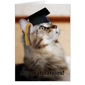 Mortarboard que lleva del gato de la enhorabuena tarjeta de felicitación