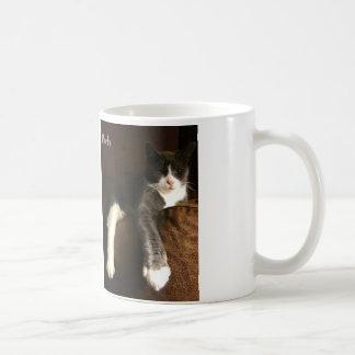 Morty el blanco de la taza una del gato