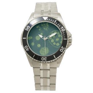 Morum de Pandorina de las algas verdes Relojes De Pulsera