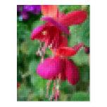 Mosaic Fuchsia 4 Post Card