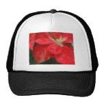 Mosaic Mottled Red Poinsettia 1 Ephemeral Mesh Hat