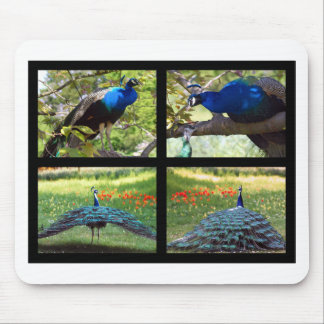 Mosaic photos Indian peafowls Mouse Pad