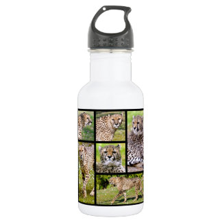 Mosaic photos of African Cheetahs Stainless Steel Water Bottle