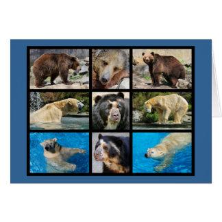 Mosaic photos of bears card