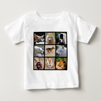 Mosaic photos of Canidae Baby T-Shirt