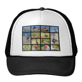 Mosaic photos of ducks trucker hat