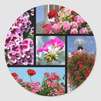 Mosaic photos of geranium classic round sticker