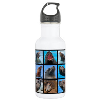 Mosaic photos of  sea lions water bottle