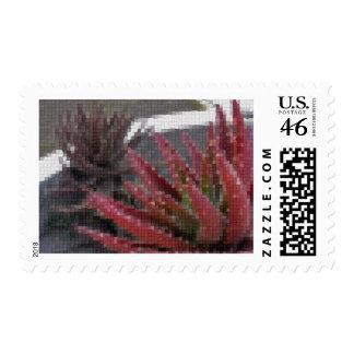 Mosaic Red-Green Aloe 3 Stamp