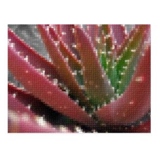 Mosaic Red-Green Aloe Post Card