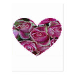 Mosaico color de rosa postales