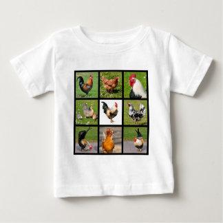 Mosaico de las fotos de gallos y de gallinas camisas