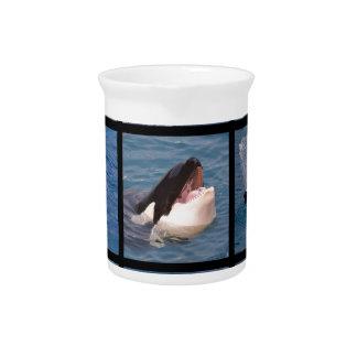 Mosaico de las fotos de orcas jarras de beber