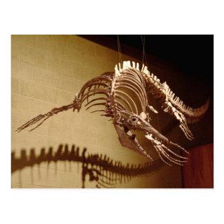 "Mosasaur - ""lagarto del mar "" postal"