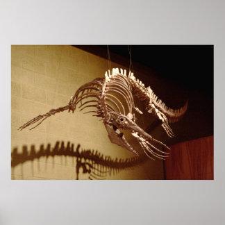 "Mosasaur - ""Sea Lizard"" Poster"