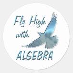 Mosca alta con álgebra pegatinas redondas