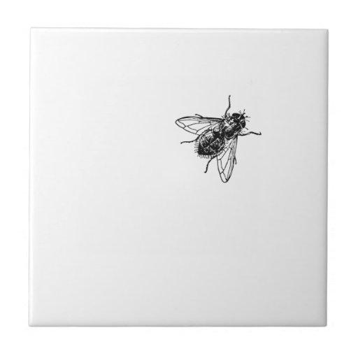 mosca azulejo cuadrado pequeño