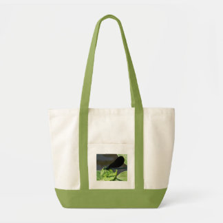 Mosca de la damisela bolsas lienzo