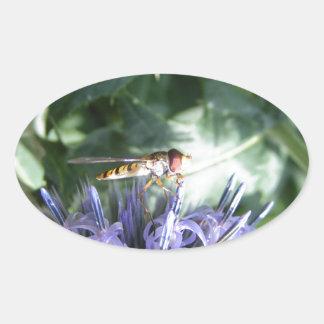 Mosca de la libración en una flor púrpura pegatina ovalada