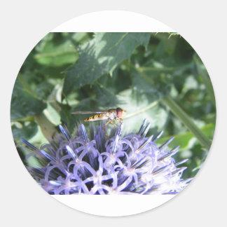 Mosca de la libración en una flor púrpura pegatina redonda
