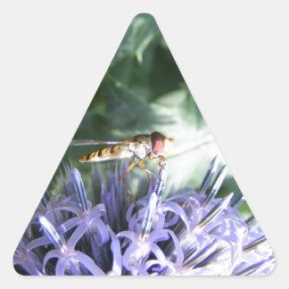 Mosca de la libración en una flor púrpura pegatina triangular