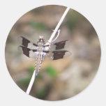 mosca del dragón etiqueta redonda