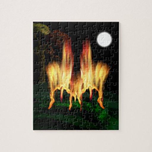 Mosca del fuego rompecabezas con fotos