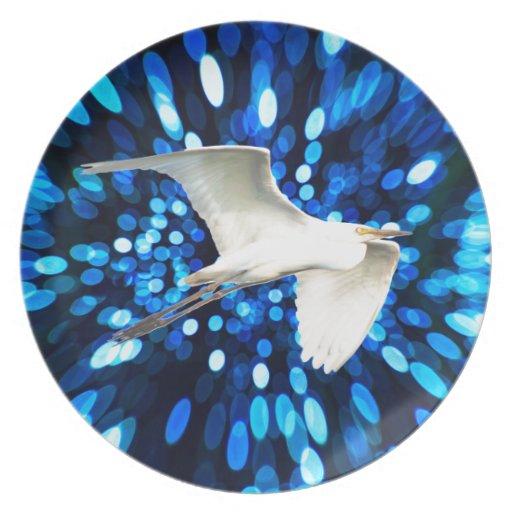 Mosca del pájaro en el espacio platos
