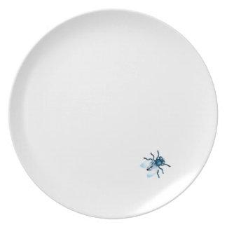 Mosca en una placa plato de cena