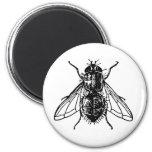 mosca imán redondo 5 cm