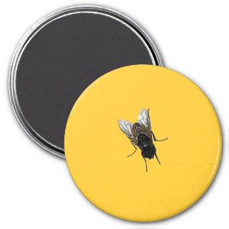 mosca imán redondo 7 cm
